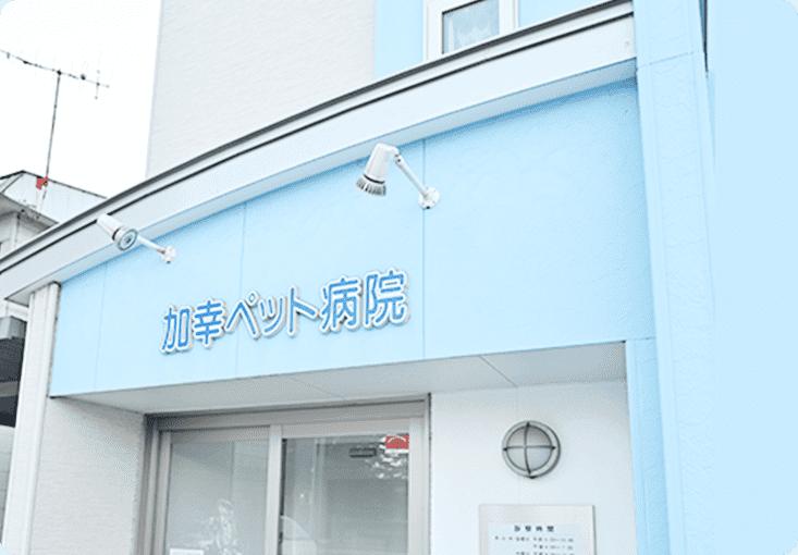 の 病院 近く 動物 水戸市新原のふくまる動物病院 犬・猫 土曜・日曜・祝日診療
